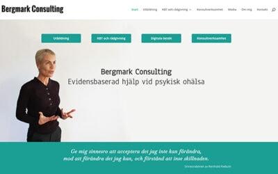 bergmarkconsulting.se